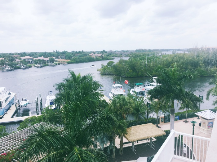 Our view for the weekend in Jupiter, FL